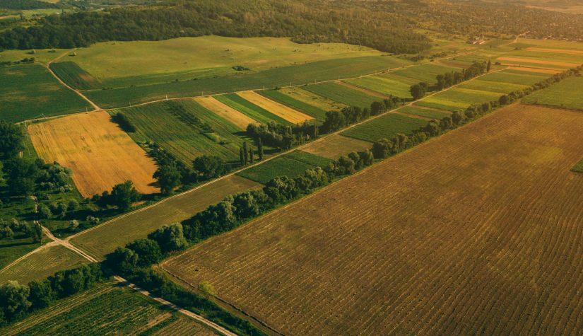 empresa de alambres para delimitar zonas de campo